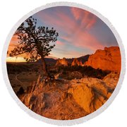 Round Beach Towel featuring the photograph Garden Sunrise by Ronda Kimbrow