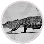 Gator Walking Round Beach Towel