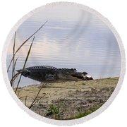 Gator's Dinner Round Beach Towel