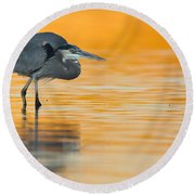 Round Beach Towel featuring the photograph Gbh In Orange Water by Bryan Keil