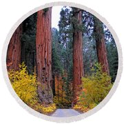 Round Beach Towel featuring the photograph General's Highway by Lynn Bauer