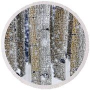 Gently Falling Forest Snow Round Beach Towel by Don Schwartz