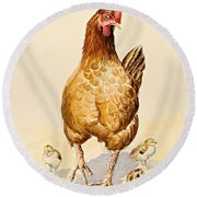 George's Hen And Her Chicks Round Beach Towel