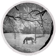 Georgia Horses Round Beach Towel