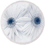 Gerber Daisy Flowers In Blue Round Beach Towel
