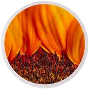 Round Beach Towel featuring the photograph Gerbera On Fire by Adam Romanowicz
