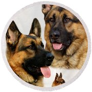 German Shepherd Collage Round Beach Towel