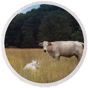 Ghost Cow And Calf Round Beach Towel