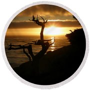 Ghost Tree At Sunset Round Beach Towel