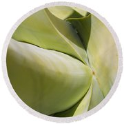Giant Agave Abstract 9 Round Beach Towel
