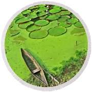Giant Water Lilies And A Dugout Canoe In Amazon Jungle-peru Round Beach Towel