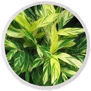 Ginger Lily. Alpinia Zerumbet Round Beach Towel by Connie Fox