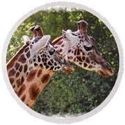 Giraffe 03 Round Beach Towel