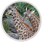 Giraffe Massage Round Beach Towel by Richard Bryce and Family