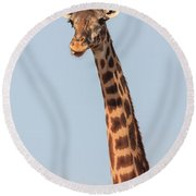 Giraffe Tongue Round Beach Towel