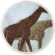 Giraffes In The Mist Round Beach Towel