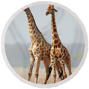Giraffes Standing Together Round Beach Towel