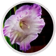 Gladiolus - Summer Beauty Round Beach Towel