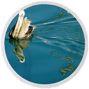 Round Beach Towel featuring the photograph Gliding by Clare Bevan