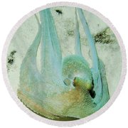 Round Beach Towel featuring the photograph Gliding Reef Octopus by Amy McDaniel