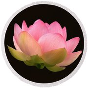 Glowing Lotus Square Frame Round Beach Towel by Byron Varvarigos