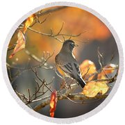 Glowing Robin 2 Round Beach Towel by Nava Thompson