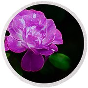 Glowing Rose II Round Beach Towel