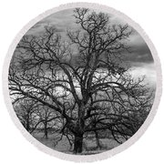 Round Beach Towel featuring the photograph Gnarly Tree by Sennie Pierson