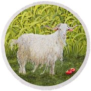 Goat Round Beach Towel
