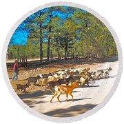 Goats Cross The Road With Tarahumara Boy As Goatherd-chihuahua Round Beach Towel