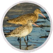 Godwits Round Beach Towel by Jane Luxton