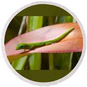 Gold Dust Day Gecko #2 Round Beach Towel by Venetia Featherstone-Witty