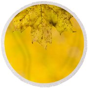 Round Beach Towel featuring the photograph Golden Autumn by Sebastian Musial