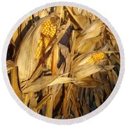Round Beach Towel featuring the photograph Golden Corn by Joseph Skompski