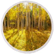 Golden Round Beach Towel by Darren  White