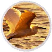 Golden Egret Bird Nature Fine Photography Yellow Orange Print  Round Beach Towel by Jerry Cowart