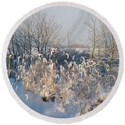 Sun On Golden Foxtail Grass In The Snow Round Beach Towel