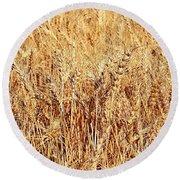 Golden Grains Round Beach Towel