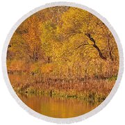 Golden Sunrise Round Beach Towel by Elizabeth Winter
