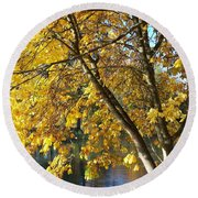 Round Beach Towel featuring the photograph Golden Zen by Chalet Roome-Rigdon