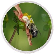 Round Beach Towel featuring the photograph Goldenrod Spider by James Peterson