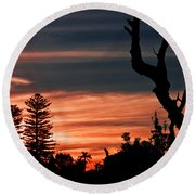Round Beach Towel featuring the photograph Good Night Trees by Miroslava Jurcik