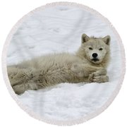 Good Wolfie ... Round Beach Towel