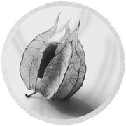 Gooseberry In Black And White Round Beach Towel