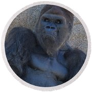 Gorilla  Portrait Round Beach Towel