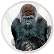Gorille De Plaine Gorilla Gorilla Round Beach Towel by Gerard Lacz