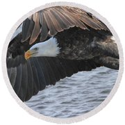 Round Beach Towel featuring the photograph Got My Eye On You by Coby Cooper