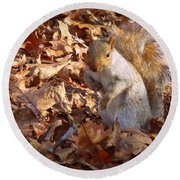 Round Beach Towel featuring the photograph Got Nuts by Joseph Skompski