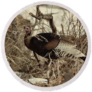 Gould's Wild Turkey Xii Round Beach Towel