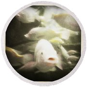 Round Beach Towel featuring the photograph Gouramis by Bradley R Youngberg